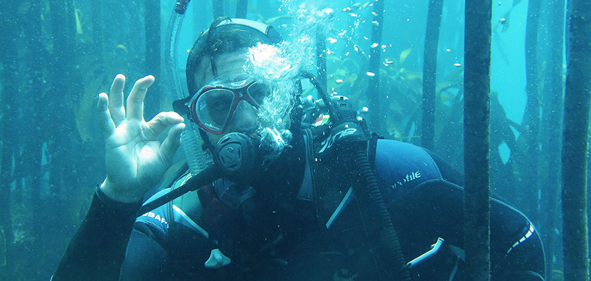 things-to-do-scuba-diving-winter-cape-town