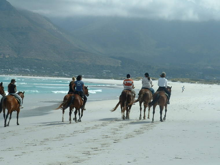 cape-town-attractions-horse-riding